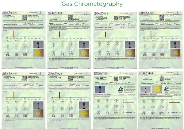 hempWorx Gas Chromatography