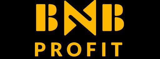 BNB Profit review